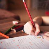 5 Great Ways to Homeschool Your Children