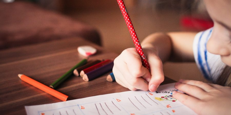 5 Great Ways to Homeschool Your Children