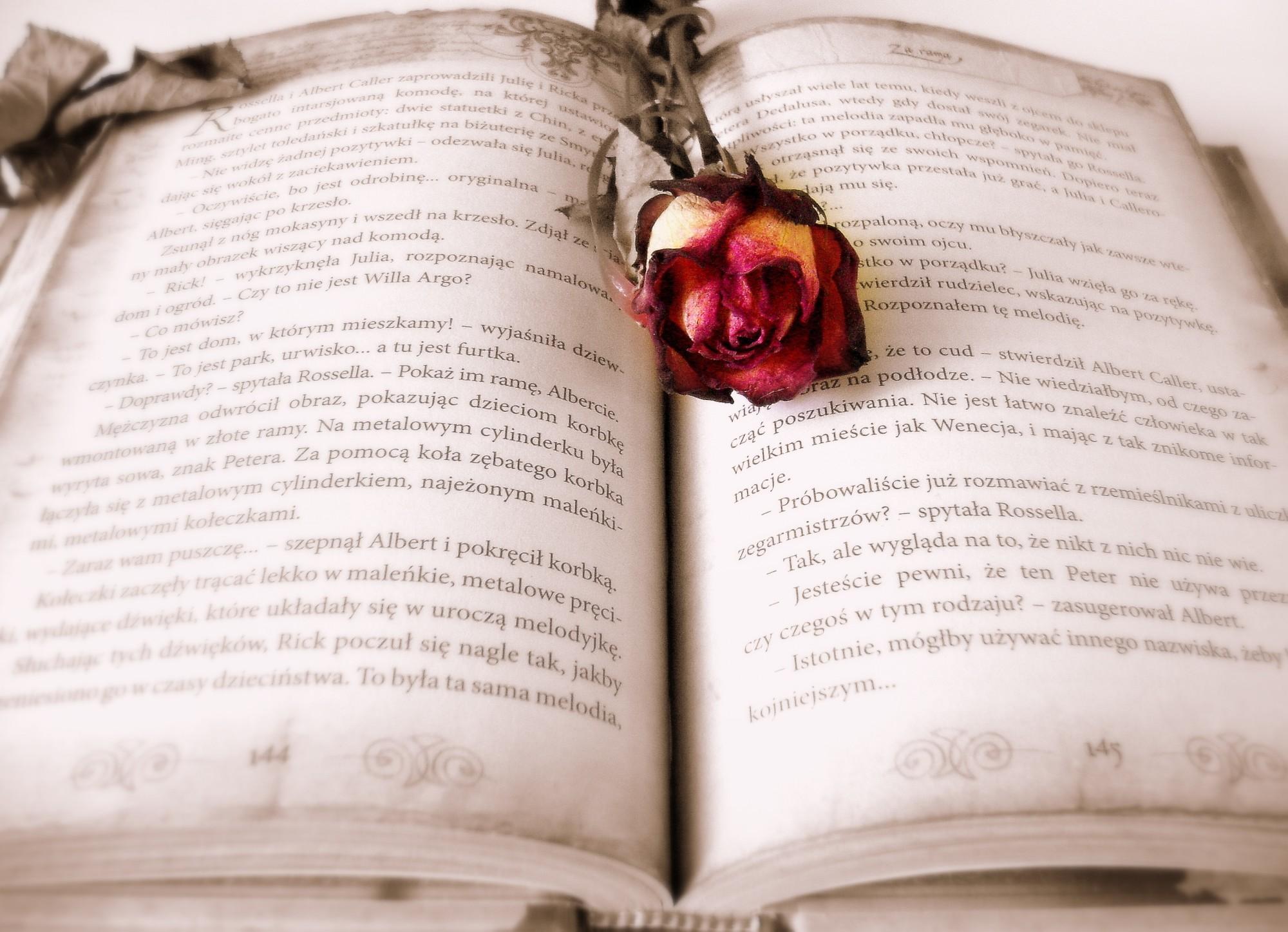 10 Cliches We Love in Trashy Romance Novels