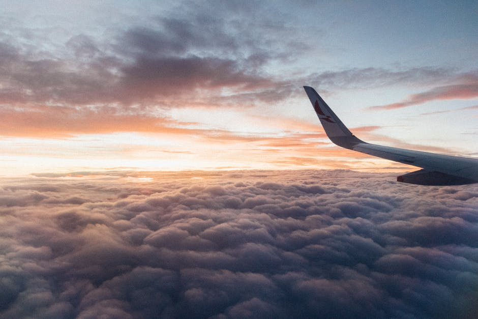 All Aboard: What You Need to Know Before Flying With CBD Oil