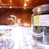 Where Can You Find a High Quality Medicinal Marijuana Dispensaries?