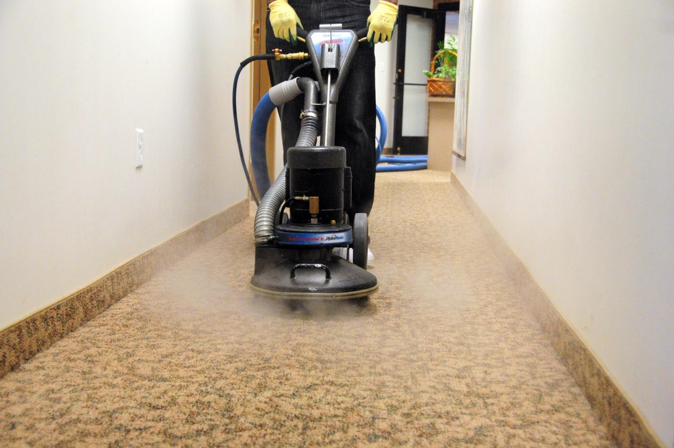 The Surrey Carpet Cleaning Service
