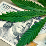What Can You Buy in a Pot Shop?