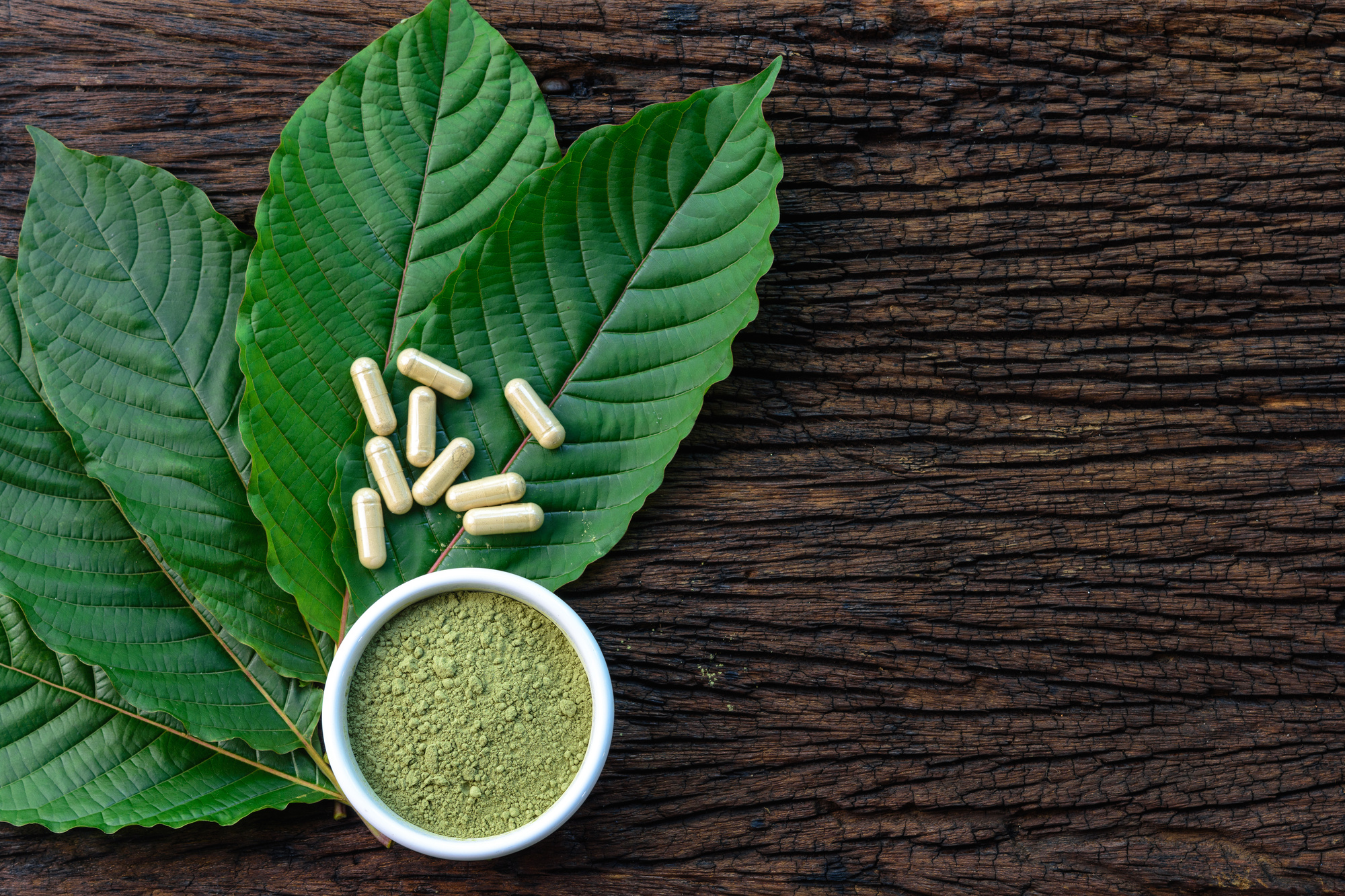 The Ultimate Herbal Guide: All-Natural Medicines You Should Consider Trying Out
