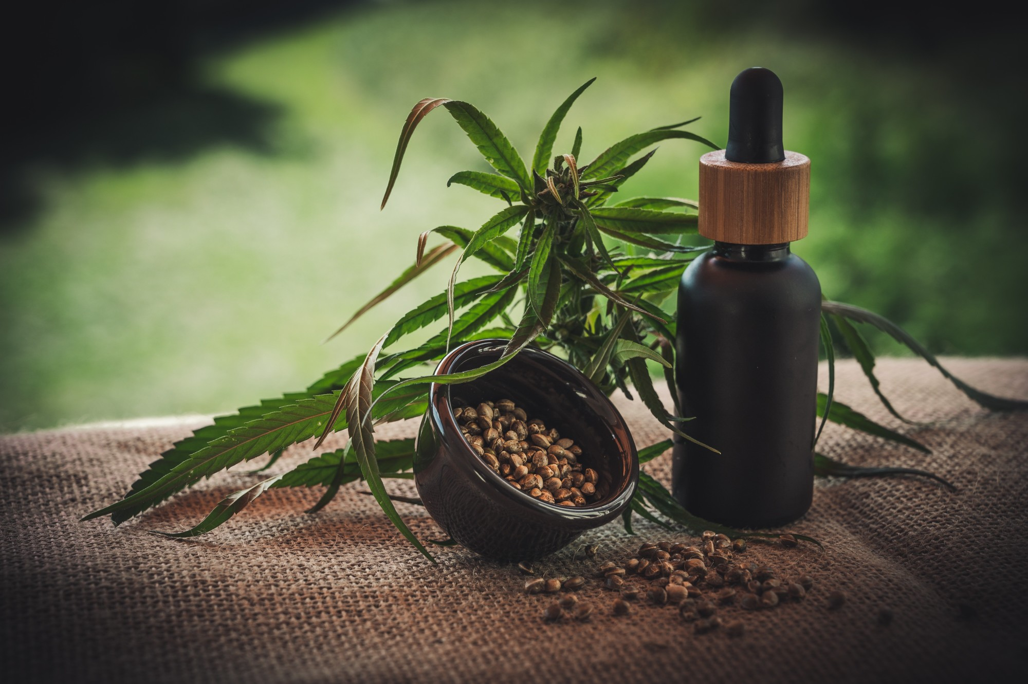 The Different Ways You Can Absorb CBD to Get the Best Results