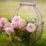 5 Occasions Where It's Appropriate to Give Pink Roses