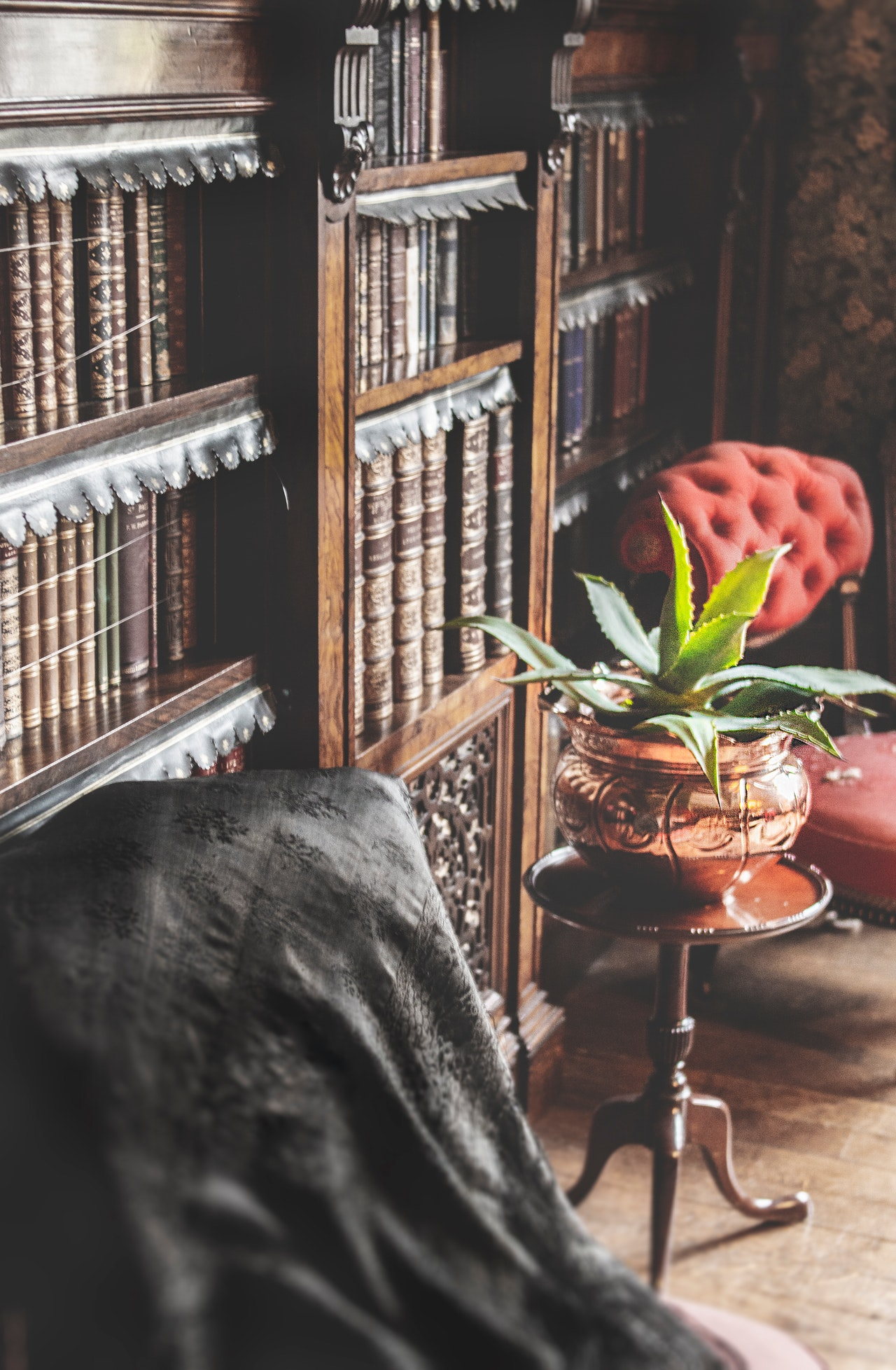 Home Library: Escape The World With The Collection Of Good Books