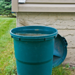 How Big Families Can Conserve Water: 7 Tips And Tricks