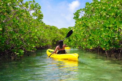 8 Tips for Beginners in Kayaking: Things to Know as a First-time Paddler